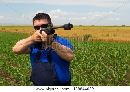 Farmer is shooting at bird with air gun in the corn field