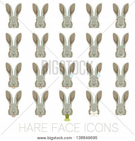 Vector image of the set of Hare faces