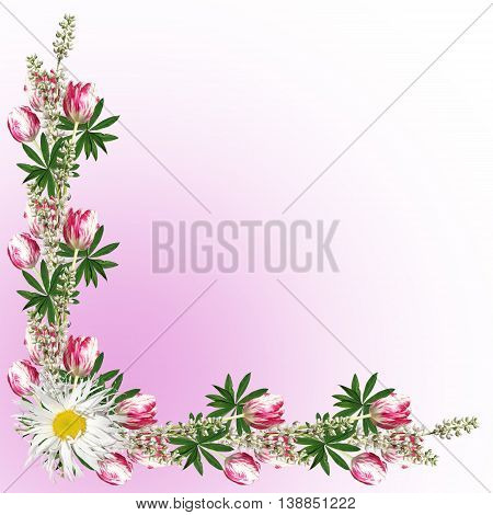 Beautiful floral background lupine, daisies and tulips
