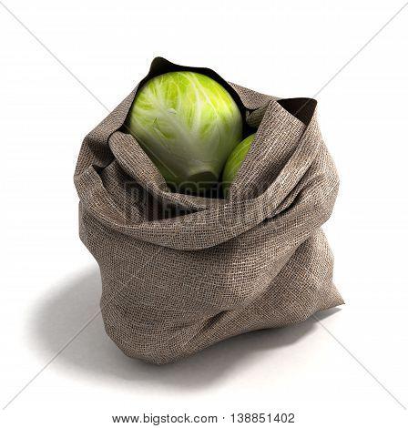 Cabbage Bag 3D Render On White Backgrownd
