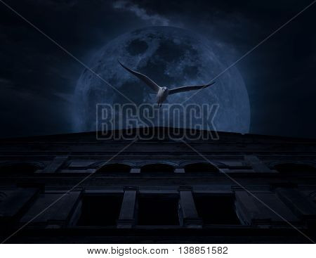 Horror scene of bird fly with old grunge castle over moon and cloudy sky Spooky background Halloween concept