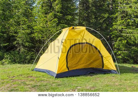 Yellow inner tent of a hiking dome tent with flexible poles in a clearing on the background of a spruce forest