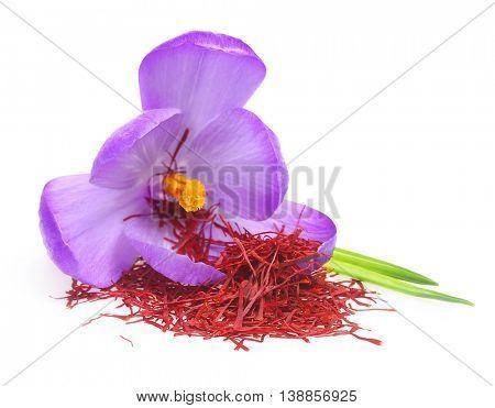 Flower crocus and dried saffron spice