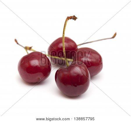 Dark Red Cherry Isolated On White