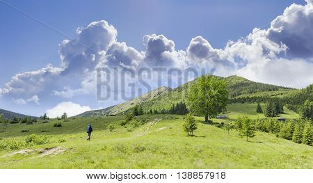 Carpathian mountain landscape with hiker with a backpack against the background of the mountain peaks mountain pastures and the sky with clouds in summer day