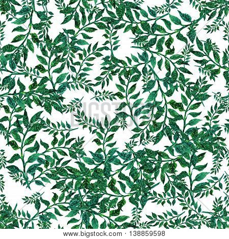 Beautiful nature background seamless pattern with herbs and leaves.. Floral seamless pattern with summer or spring herbs and leaves.. Stylish trendy wallpaper.