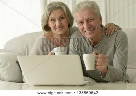 Portrait of a senior couple with laptop
