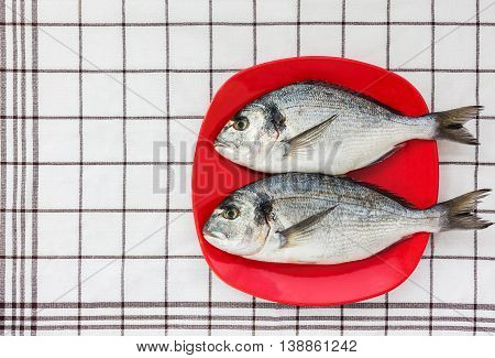 Fresh Dorado Fish On Red Plate. Top View, Copy Space.