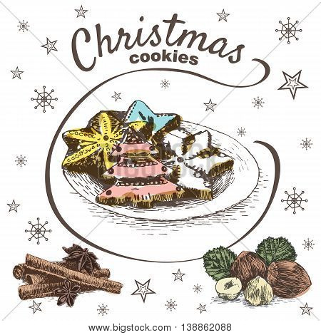 Vector colorful illustration of Christmas cookies with cinnamon and hazelnut. Christmas cookies on white background with snowflakes