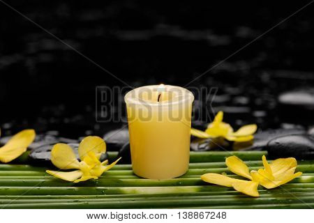 Still life with candle with yellow orchid on long plant