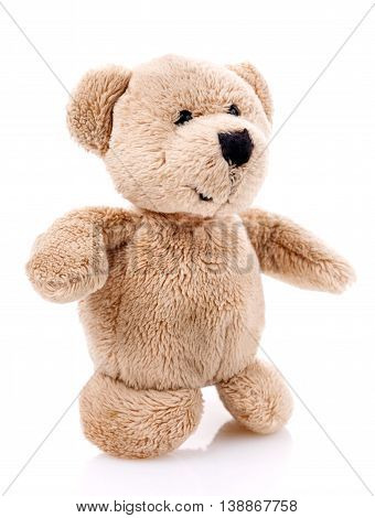 Children toy, Soft teddy bear  isolated on white background