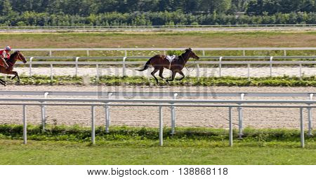 The horse threw the jockeyhorse race for the prize Oaks