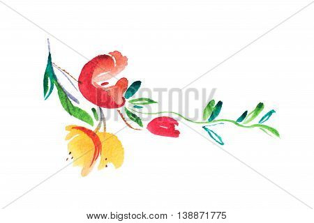 watercolor drawing of fresh garden flowers, summer meadow bouquet aquarelle painting.