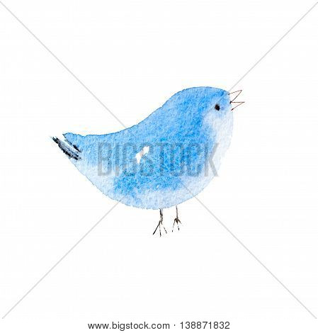 Blue bird hand drawn watercolor aquarelle illustration