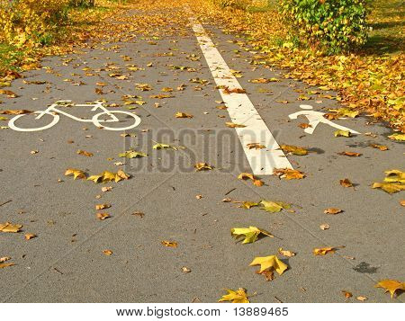 Bicycle path and footpath