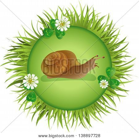 Insects and summer nature icon. snail crawling on the meadow