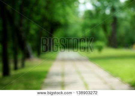 Blurred walkway in summer park