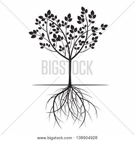 Black Tree and Roots. Vector Illustration. Nature