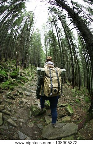Single tourist walking in mountain forest