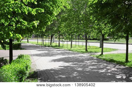 Footpath with green trees on both sides