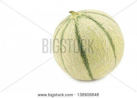 one whole cantaloupe melon on a white background