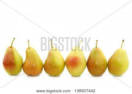 row of fresh