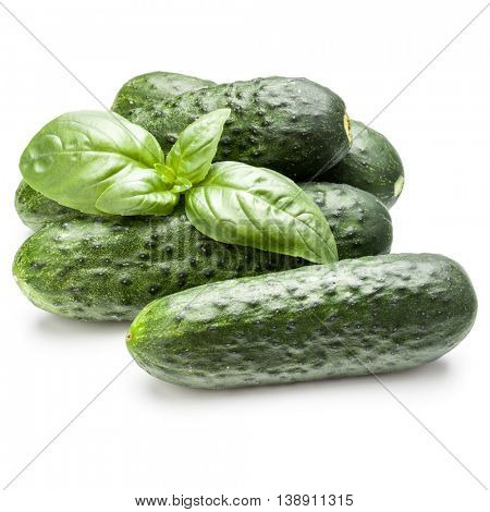 Cucumber vegetable and basil leaves isolated on white background cutout