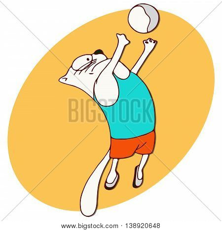 Cats athlete in sports wear. Volleyball player Cat throwing the ball. Jump set. Athletics. Funny animal sport sticker. Cartoon style. Vector illustration