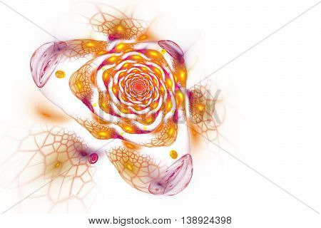 Abstract colorful rose flower on white background. Fantasy orange yellow red and violet fractal design for postcards or t-shirts. 3D rendering.