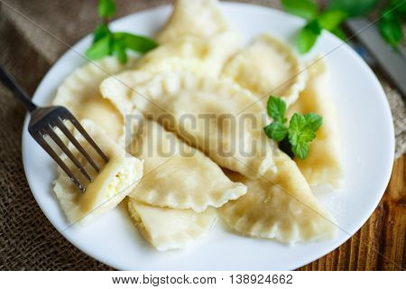sweet boiled dumplings with cottage cheese and mint