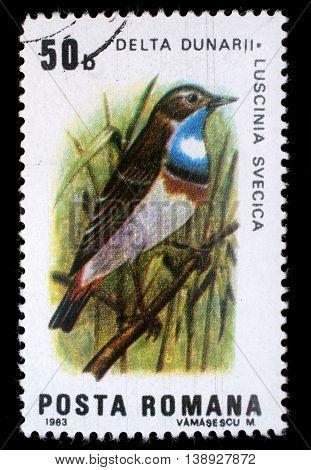 ZAGREB, CROATIA - JULY 18: stamp printed by Romania, shows Bluethroat(Luscinia svecica),  circa 1983, on July 18, 2014, Zagreb, Croatia