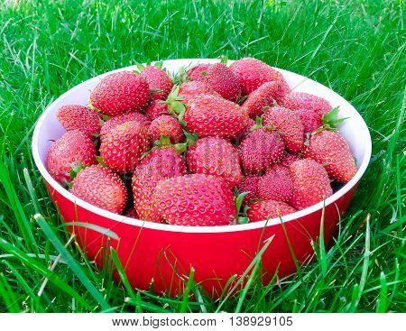 Delicious ripe strawberries in the home plate among green grass , there are pictures of this series