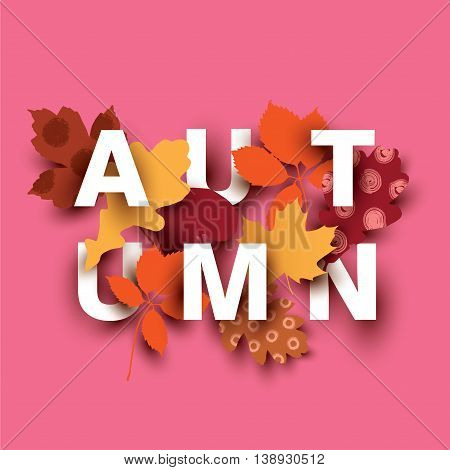 Autumn card with different plant elements on pink background. Colorful illustration for your banner, poster, flyer. Vector illustration.