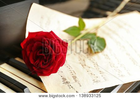 Red rose and notes on piano