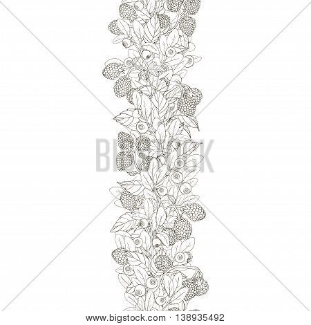 Seamless border of twigs blueberry and raspberry with berries and leaves on a white background. Berries hand painted dark lines and painted white. Vector illustration