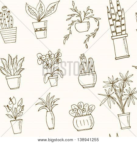 seamless pattern plants in a pot Hand drawn doodle vector sketch illustration