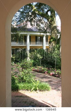 Framed View Of Plantation
