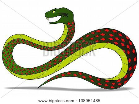 illustration with the image of colored aggressive snake