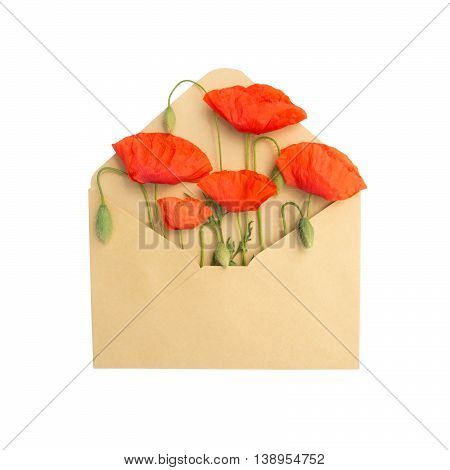 red poppies in the envelope isolated on a white background