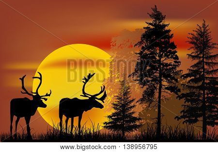 illustration with deers silhouettes at sunset