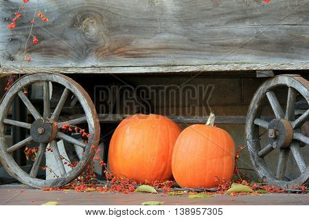 Two large pumpkins on the wood floor next to wagon wheels