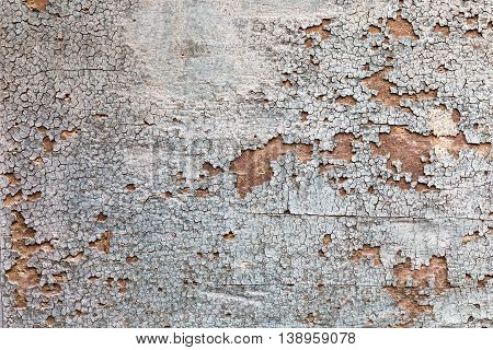 Background Texture From Cracked Sunburnt Paint On Wood