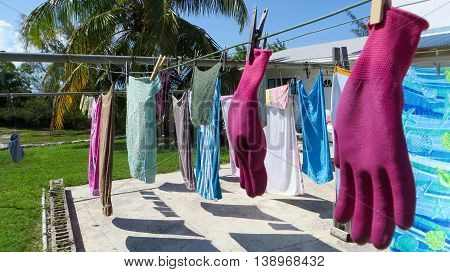 Laundry with gloves and beach towels hanging on the clothes line drying in the Bahama breeze on a sunny summer day with palm tree in the background