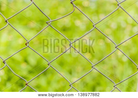 close up old pattern Barb Wire in grass backgrouhd