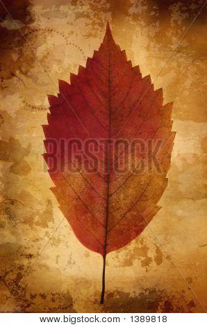 Warm Vintage Background With Leaf