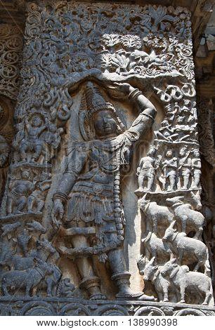 Krishna lifting Govardhana mountain to protect his people and cows; carved in Hoysaleshwara temple at Halebidu Hassan district Karnataka state India Asia