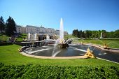 pic of samson  - Fountains  - JPG