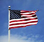 stock photo of american flags  - american flag - JPG