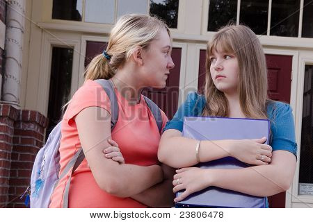 Teen Girl Bully