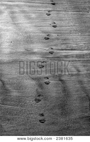 Footprint In Black And White